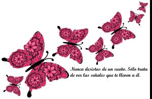 vuelo mariposa.jpg